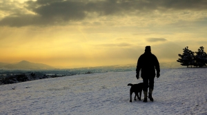 A bracing winter walk on Lyth Hill, near Shrewsbury, Shropshire
